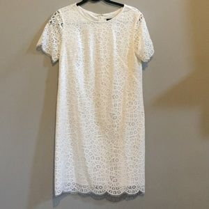 Ann Taylor white eyelash lace shift dress